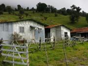 Costa_Rica (29).jpg