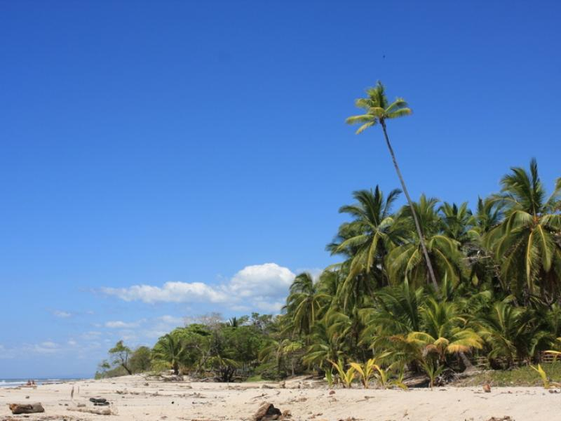 Costa_Rica (4).jpg